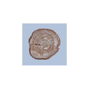plato-servirismatos-melaminis-efe-xylou-33ek-35033–pr–60929